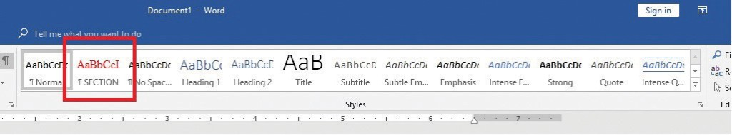 Figure 9: The SECTION button we created containing a set of formatting parameters.